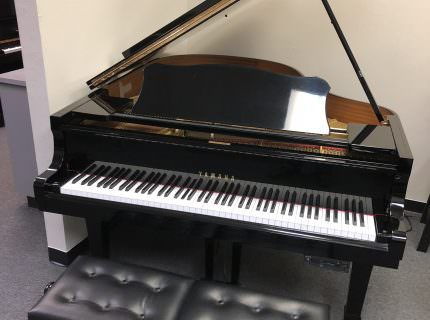 Yamaha G2 with player system